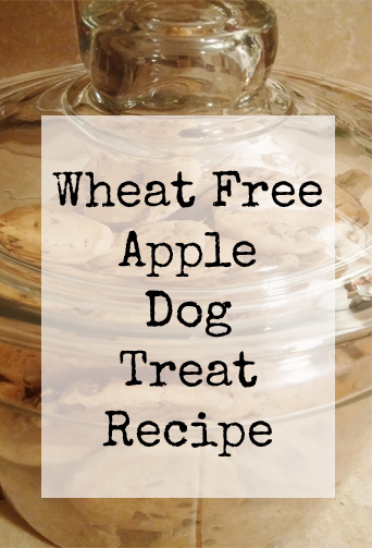wheat free apple dog cookies