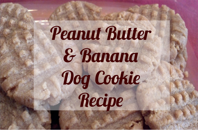 peanut butter and banana dog cookies