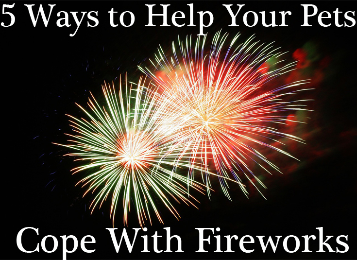 help your pets cope with fireworks