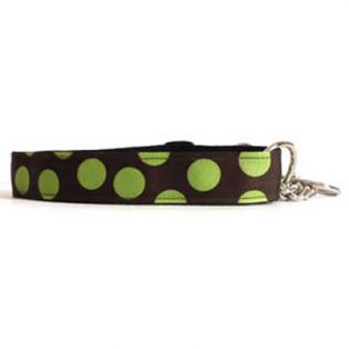 green dots martingale fixed