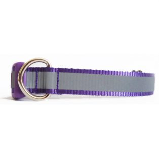 purple reflective fixed
