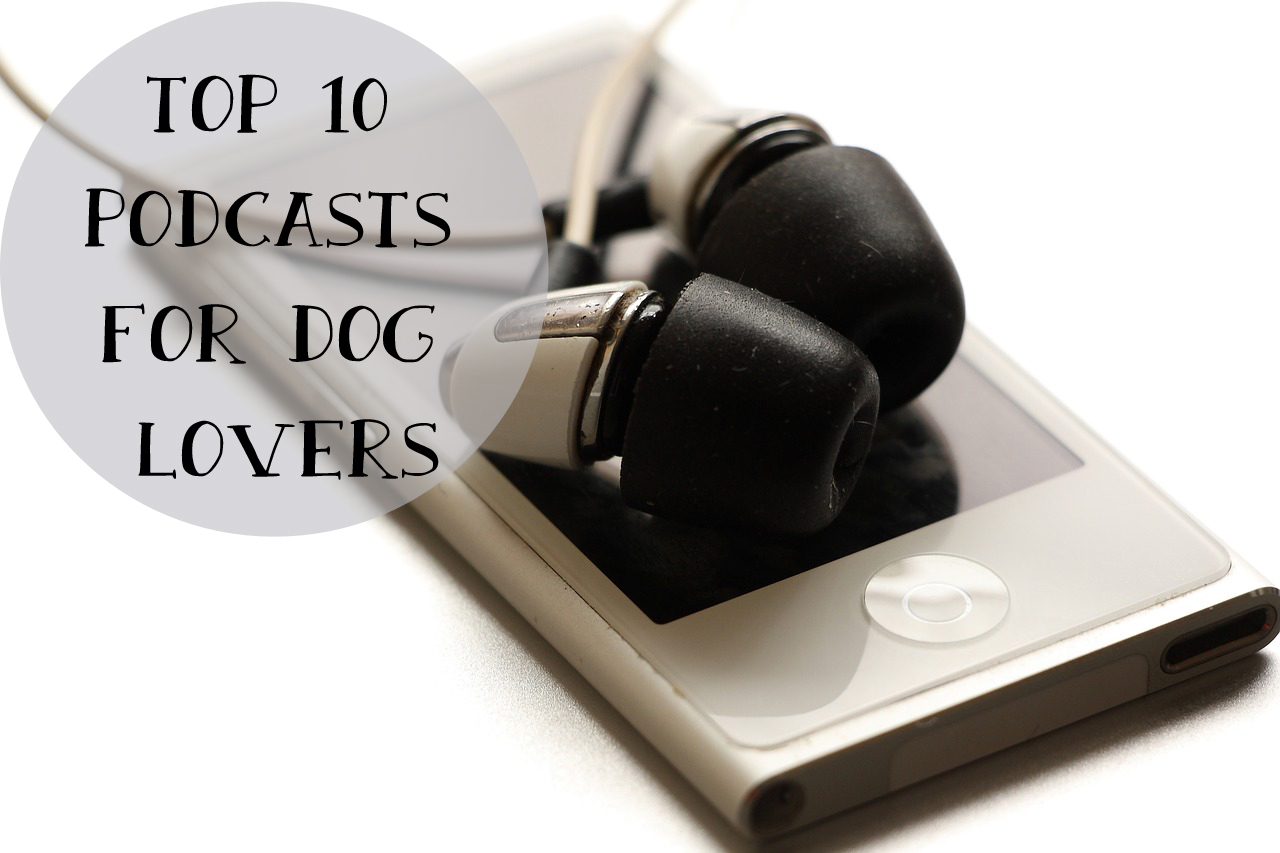 top 10 podcasts for dog lovers