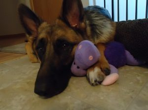 Ivy and her Hippo