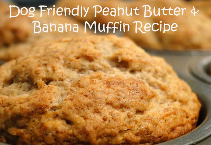 peanut butter banana dog recipe