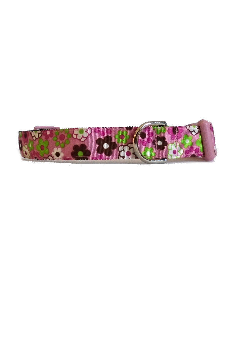 flowers on pink collar
