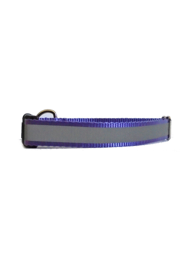 purple reflective collar