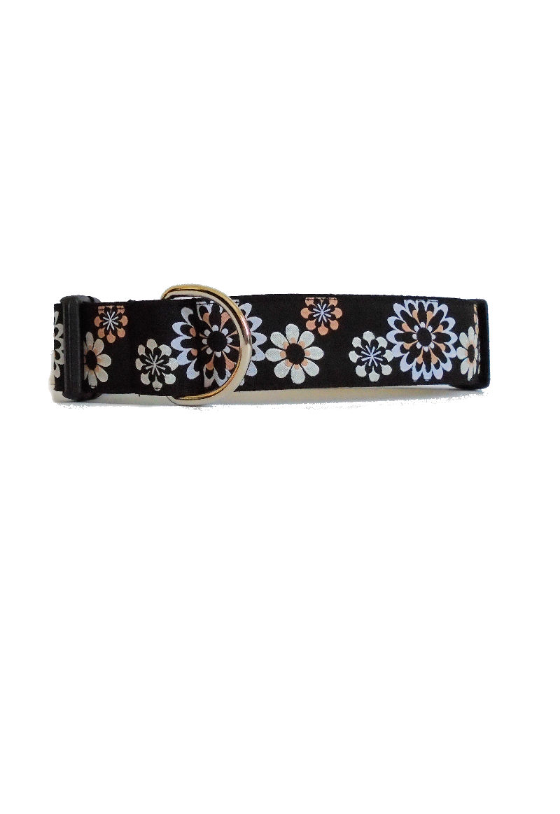 tan flower dog collar