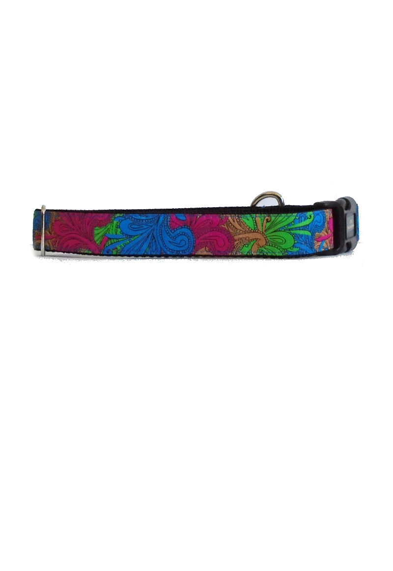 beautiful paisley dog collar